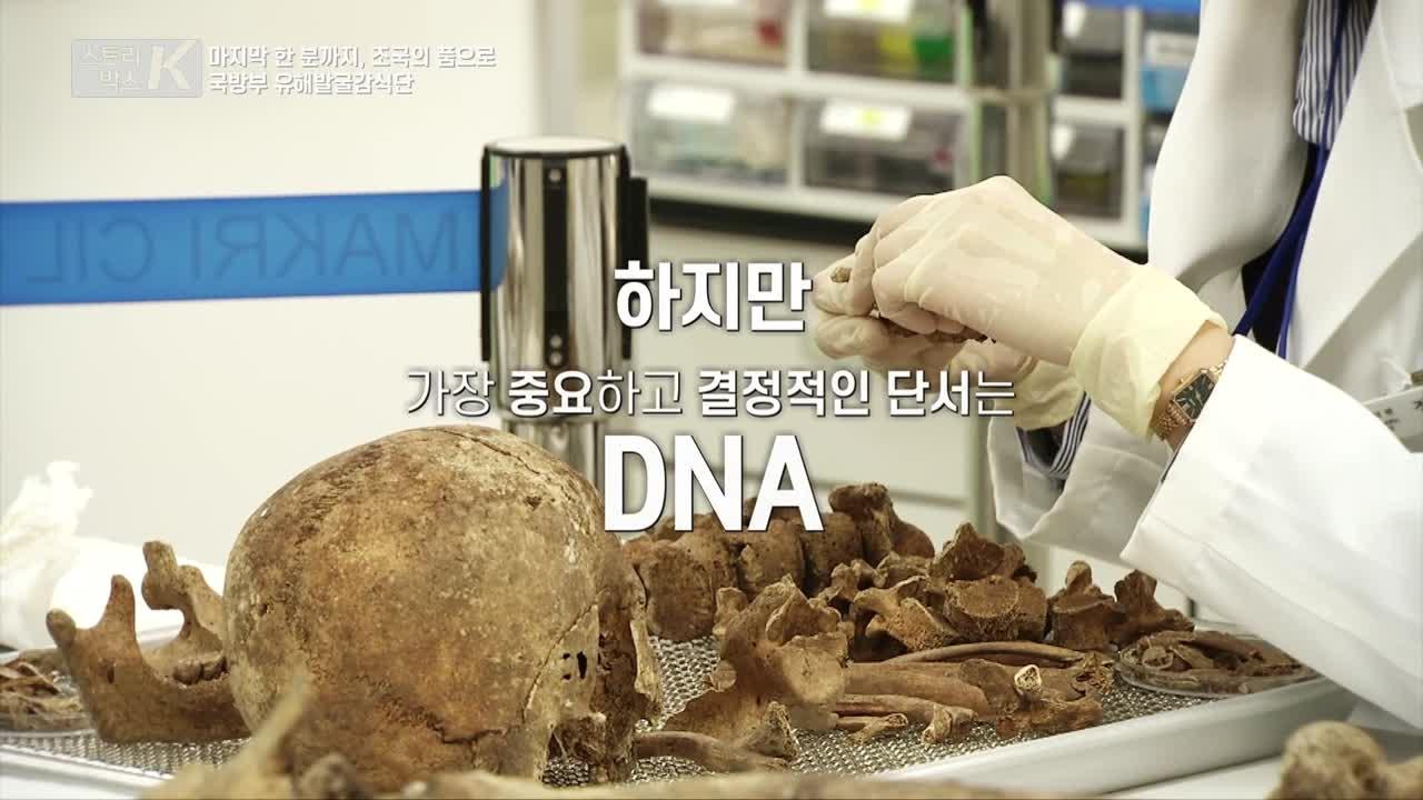 [스토리박스K] 11회 마지막 한 분까지, 가족의 품으로 '국방부 유해발굴감식단'