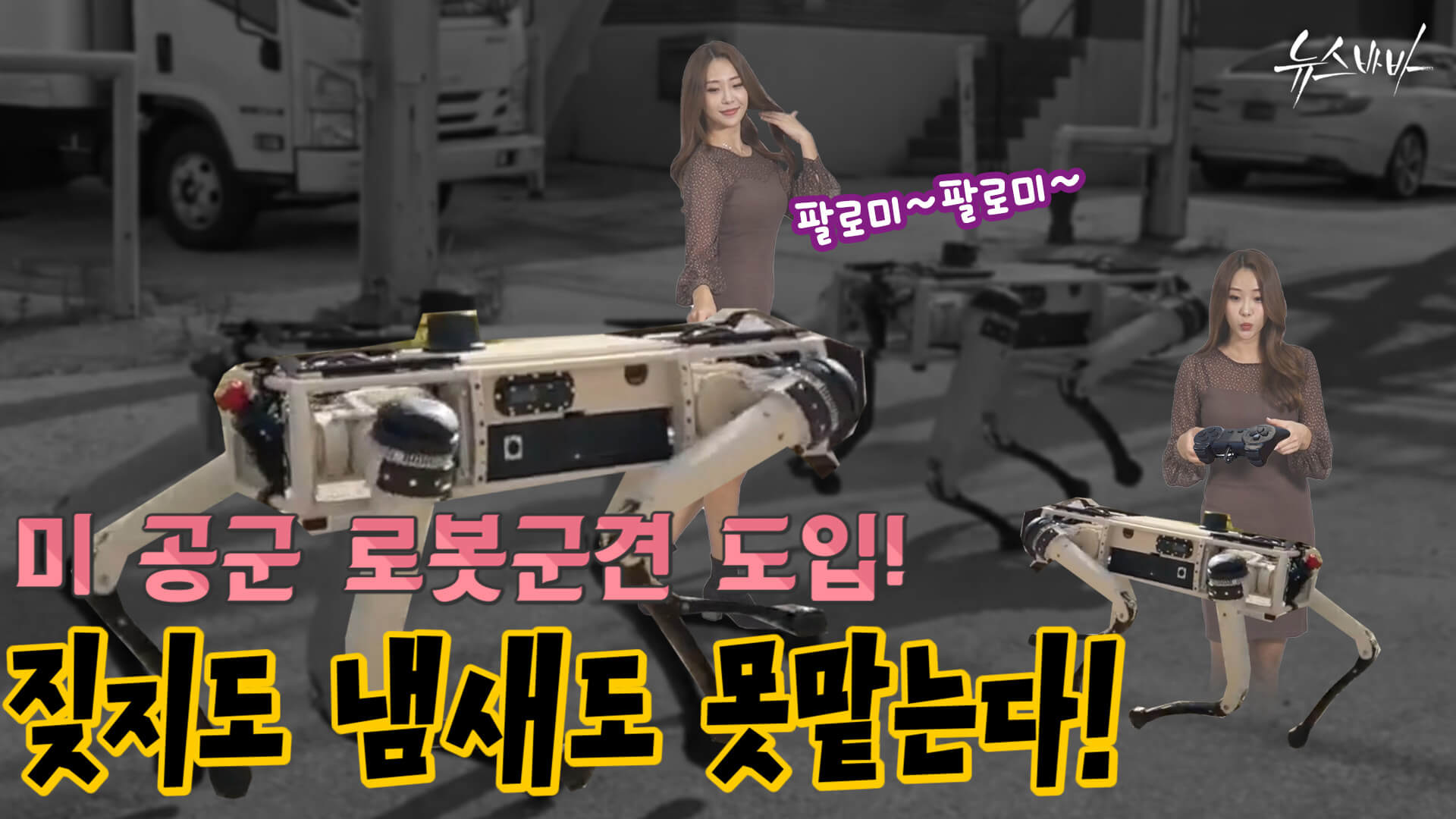 [뉴스바바] 미 공군 로봇군견 도